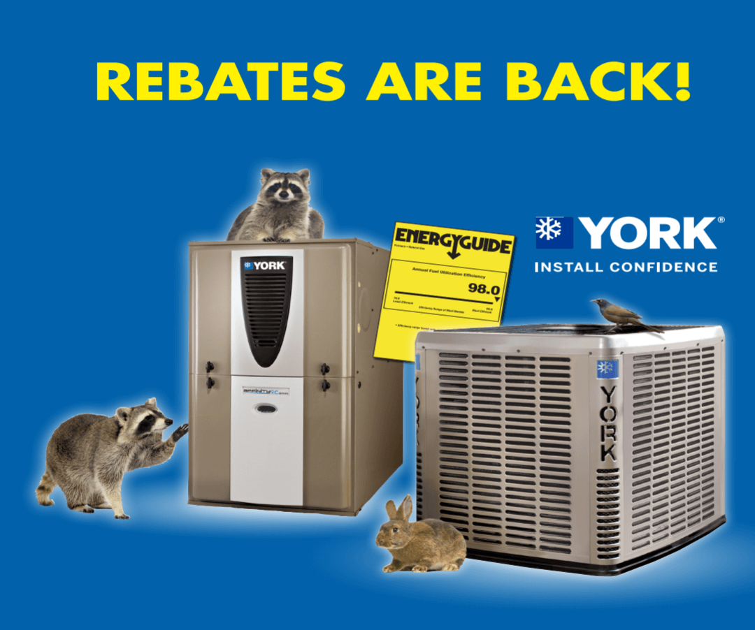 Rebates are back!